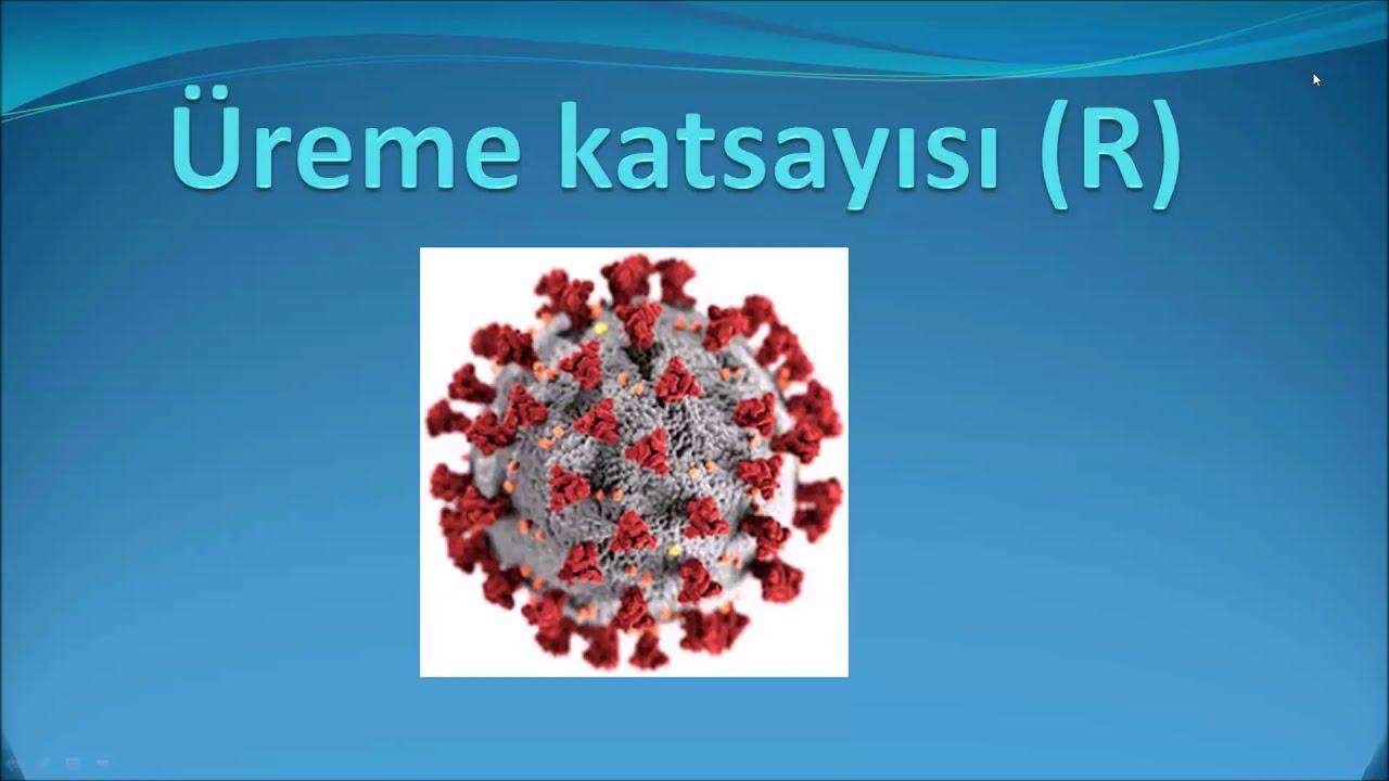 https://istabip.org.tr/site_icerik/2020/kasim/r-sayisi-nedir.jpg